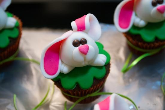 bunny-29251