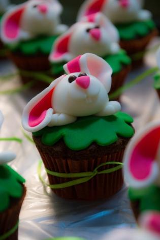 bunny-29253
