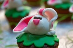 bunny-29264