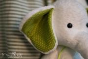 elefante_enzo-30182